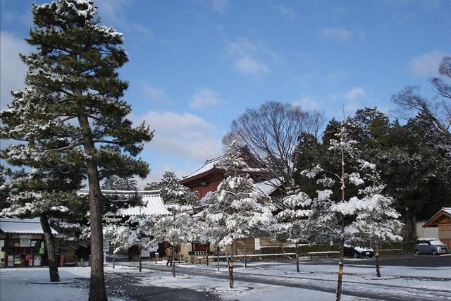 大徳寺三玄院更换榻榻米时摄影